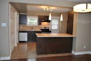 Renovated 3 Bedroom Duplex in Moncton - NOV 1st