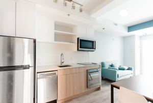 All Inclusive Fully Furnished Unit For Rent - Sandy Hill - $1450