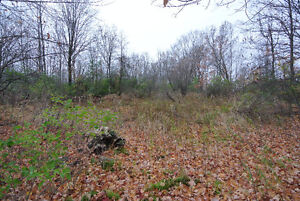 Deep Lot - Close to Balsam Lake & Kirkfield