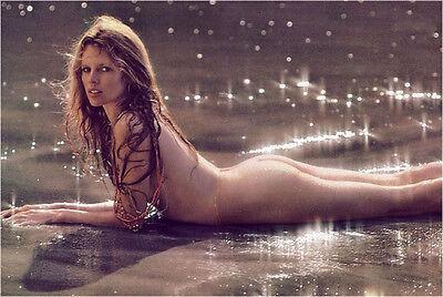 Kim Basinger Superstar   8X10 Photo