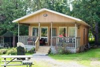 8 Cottages for Rent Mountain Lake, Minden Ontario