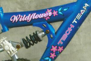"Girl's Bicycle 18"""