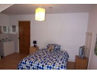 Very Large Sunny Double Room in a Shared House