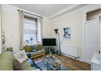 Spacious one bedroom flat with large boxroom for sale in Edinburgh