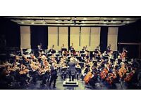 Patient and Young Violin Teacher offering lessons! (Edinburgh)