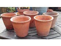 5 similar vintage terracotta plant pots