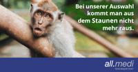 Pädagogische Fachkraft m/w/d Niedersachsen - Lilienthal Vorschau