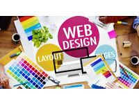 Website Design Professional -Expert Web Designer -Business, Social, Blog, etc.