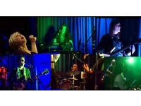 5-piece feel-good covers band for all occasions. Great fun energy, vocals, harmonies & musicianship