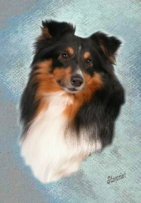 Shetland Sheepdog/Sheltie A6 Blank Card No 3 Starprint