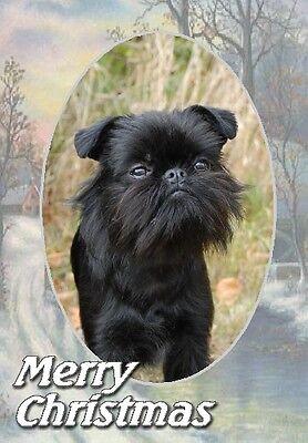 Brussels Griffon Dog A6 Christmas Card Design XGRIFFON-12 by paws2print
