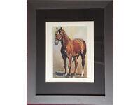 Trevor Taylor - signed framed mounted horse