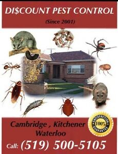 DISCOUNT PEST CONTROL (Residential & Commercial)  Kitchener / Waterloo Kitchener Area image 3