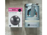 2 Gym balls