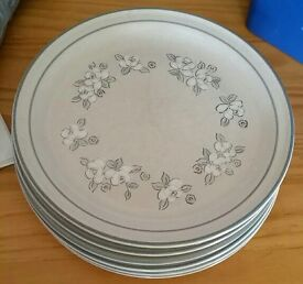 6 hearthside garlande stoneware plates
