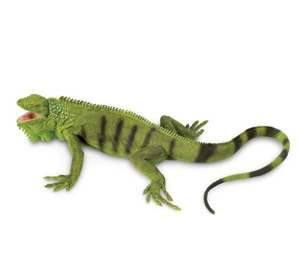 Iguana Replica  # 267729 ~  FREE SHIPPING in USA with $25.+ SAFARI, Products
