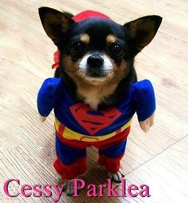 Muscle Superman Pet Dog Puppy Cat Superhero Justice League Costume XS-XL