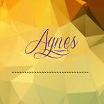 Agnes's Shop