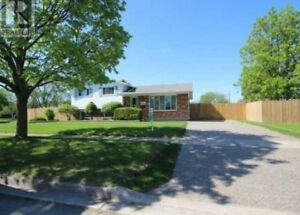 Nice House for Rent, Close to NC Welland Campus