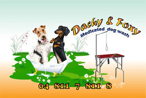 Dachy&Foxy  Dog  Grooming   Maddington -Byford - Piara-Waters Southern River Gosnells Area Preview