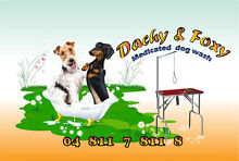 Dachy&Foxy  Mob Dog  Grooming   Maddington -Byford - Piara-Waters Maddington Gosnells Area Preview