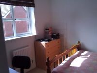 Double Room in a Wonderful Bright House
