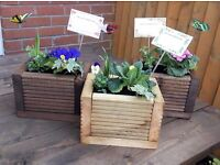 Hand made small planters with plants.