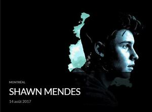 Shawn Mendes, 14/08/2017, Centre Bell, Section Rouge