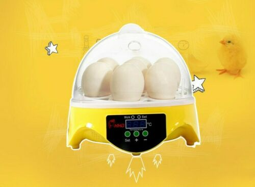 Digital 7 Eggs Mini Incubator Hatcher Bird Pet Chicken Quail Temperature Control