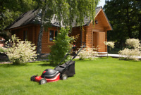 Landscaping - Grass Cutting & Trimming + More! [Done Right]
