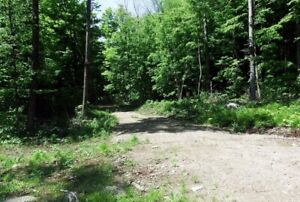 FANTASTIC LAND!!!!!!  1037 Gull Lake Rd, North Frontenac