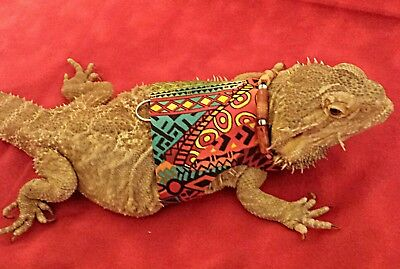 Lil' Bestie Bearded Dragon reptile Harness and Leash AFRICAN TRIBAL