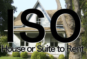 ISO: House or Suite to Rent