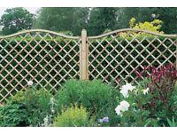 Lattice fence panel screening