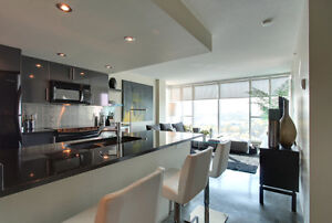 Luxury Furnished Condo in Modern Downtown High Rise