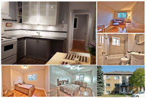 Impecable condo style 4 1/2 in Longueuil - available now