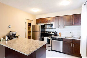 Newly Renovated Luxury Apt in Mission-Water,Heat&WiFi Included