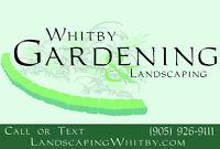 Fall Garden Clean-Up - Raking, Leaves, Pruning, Topdressing