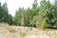 2 Acre Building Lot $209,900! Minutes to Victoria / Langford