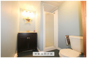 Basement room with private bathroom and shared kitchen