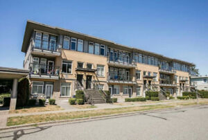 UBC Apartment Summer Sublet