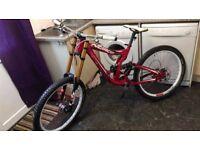 norco down hill race bike