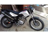 DERBI SENDA 125 CROSS CITY MINT CONDITION
