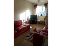 2 BED BEAUTIFUL NEW BUILD 4 SWAP PROPERTY ON SPACIOUS GROVE, SMART GARDEN PLUS 2 TOILETS + PARKING