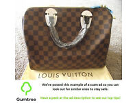 New Louis Vuitton Speedy Damier Ebene Handbag -- Read the description before replying to this ad!!