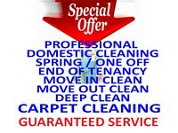 Professional Deep Cleaners, End of Tenancy Move-In Carpet Domestic House Cleaning Services Coventry