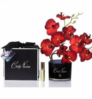 Scarlet Blossom Perfumed Natural Touch Orchid Stem Flowers