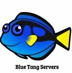 Blue Tang Servers