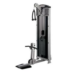 Biceps and triceps life fitness cable machine