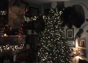 9' Christmas Tree  great condition very full branches.